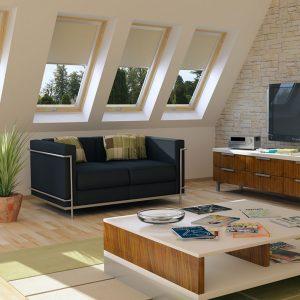 חלונות וסולמות לעליית גג